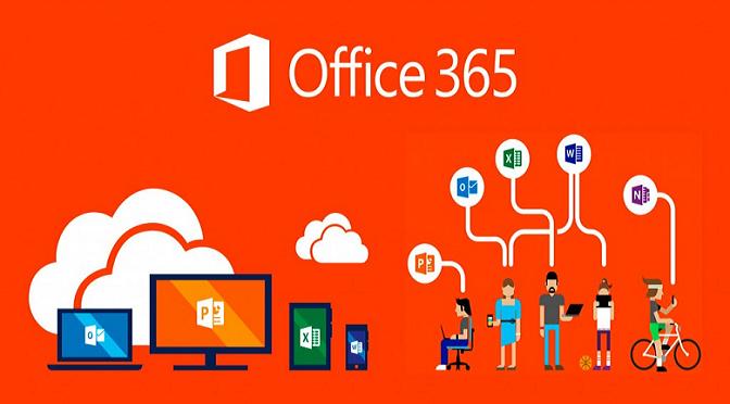persone che usano office 365